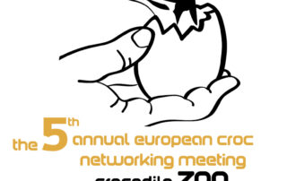 Crocodile networking logo
